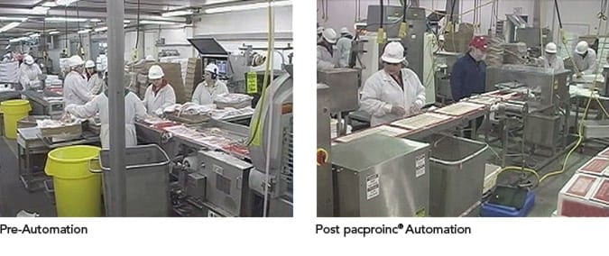 Food Packaging Automation Comparison